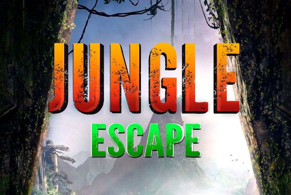 Jungle Escape (Xcape Room Sibiu) Escape Room