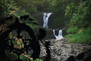 Квест The Jungle Dimension