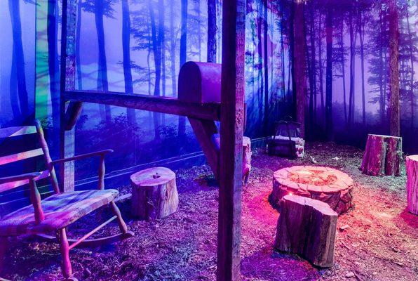 The Cabin (The Escape Game DC) Escape Room