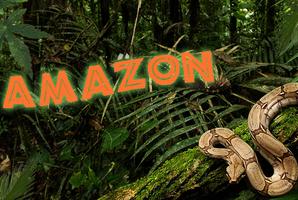 Квест Amazonas