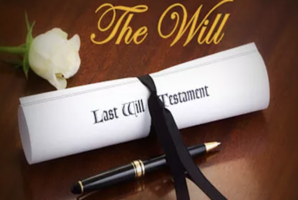 Квест The Wil