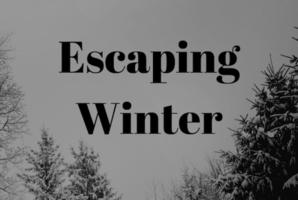 Квест Escaping Winter