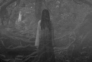 Квест The Suicide Forest