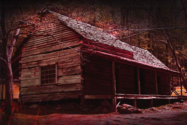 Cabin In The Woods (Mystery Rooms Surat) Escape Room
