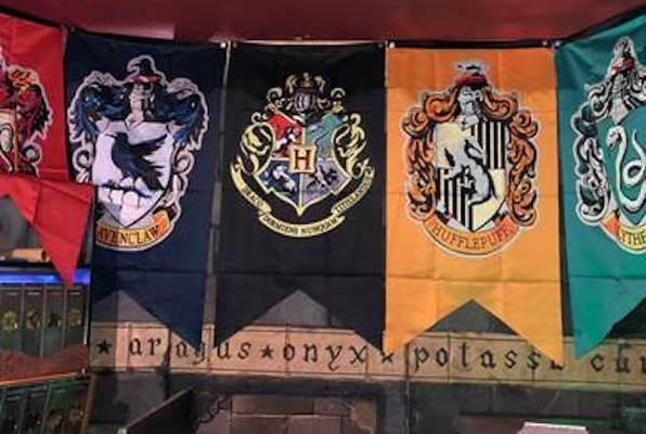 HP e la Camera Degli Enigmi