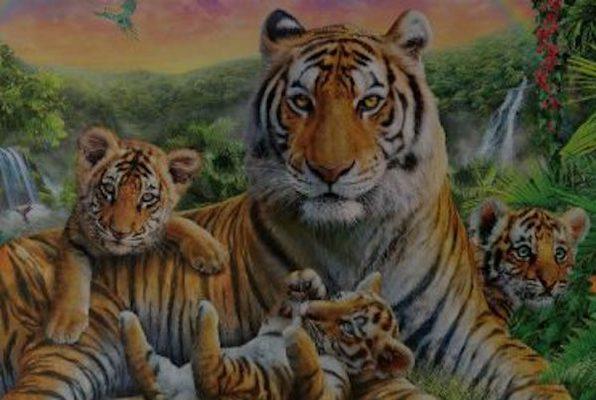 Na Ratunek Tygrysom (Tajemniczy Pokój) Escape Room