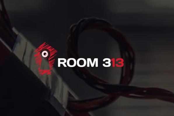 Room 313 (Escape Room 058) Escape Room