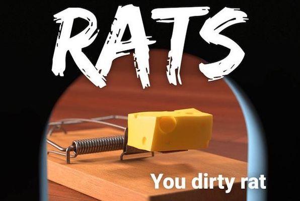Rats (Boda Borg Boston) Escape Room