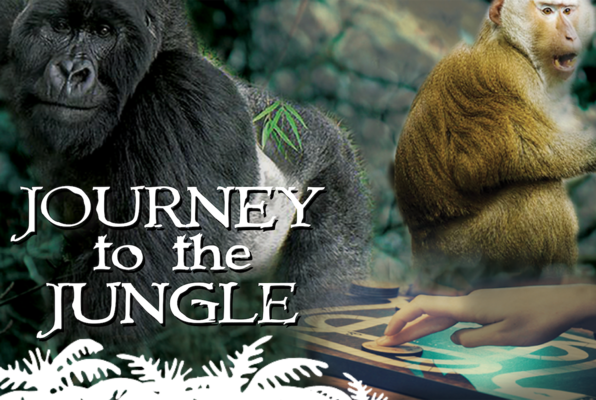 Journey to the Jungle (Corky's Gaming Bistro) Escape Room