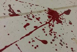 Квест CSI Budapest - The Butcher