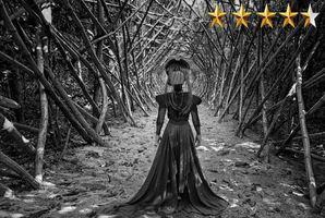 Квест The Black Queen