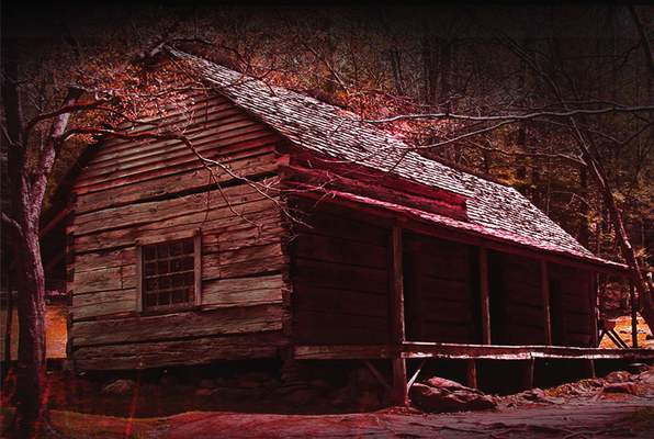 Cabin In The Woods (Mystery Rooms Guwahati) Escape Room