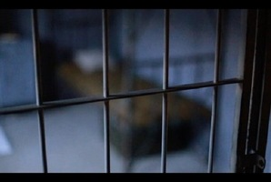 Квест Correctional Facility