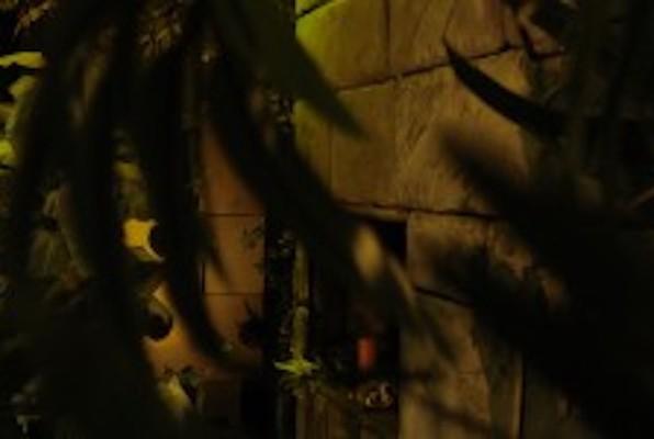 Dschungel (Key & Free) Escape Room