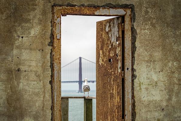 Die Flucht aus Alcatraz