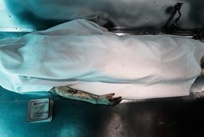 Квест Morgue