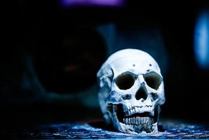 Квест Das Zombielabor