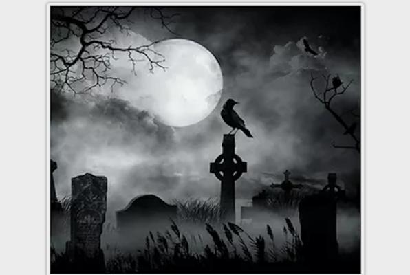 Le Cercueil de Dracula
