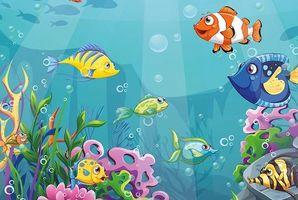 Квест Aquarium!