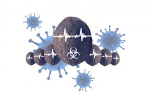 Квест Virus Lihte