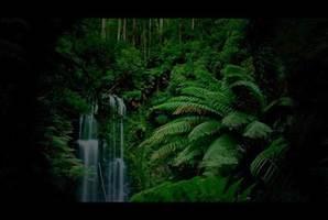 Квест La Selva Negra