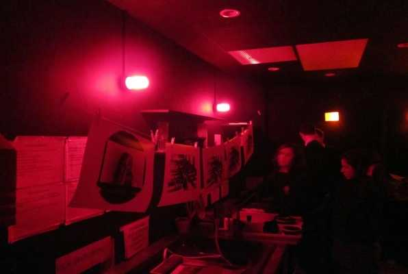 The Dark Room (PANI.Q.) Escape Room