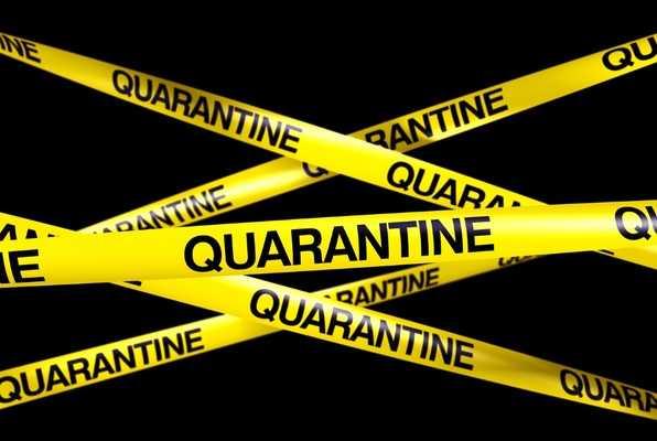 The Quarantine (PANI.Q.) Escape Room
