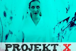 Квест Projekt x