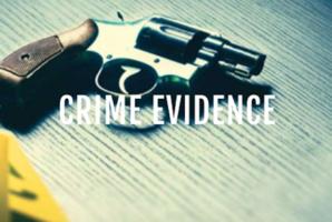 Квест Crime Evidence