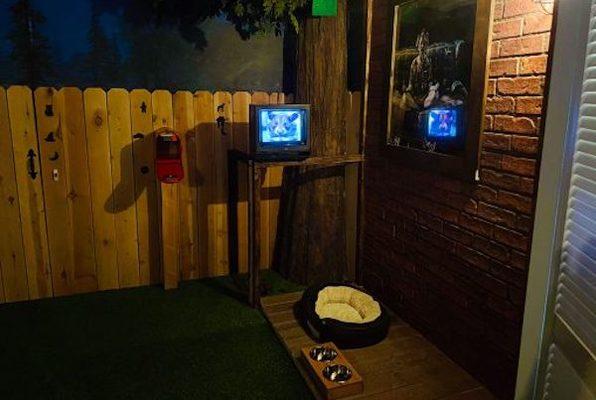 Spy Dogs (Maze Rooms) Escape Room