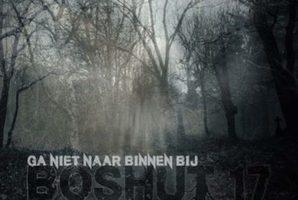 Квест Boshut 17