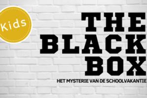 Квест The Blackbox Kids