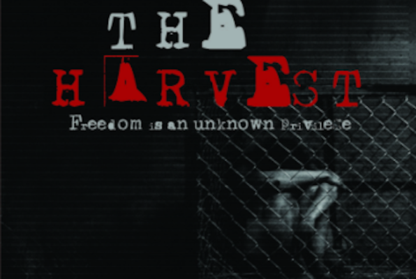 The Harvest (Mission Q) Escape Room