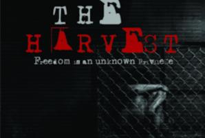 Квест The Harvest