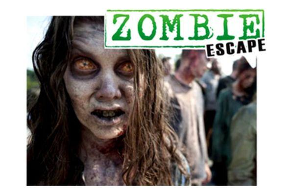 Walking Dead – Road to Survive