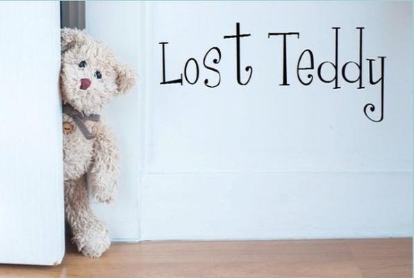 Lost Teddy