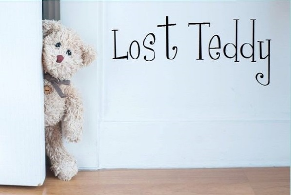 Lost Teddy
