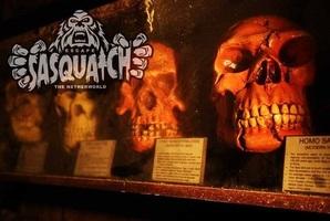 Квест Sasquatch