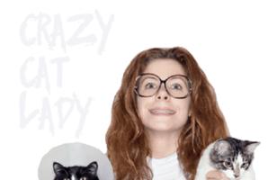 Квест The Crazy Cat Lady