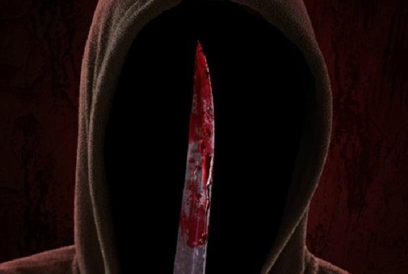Serial Killer: The Revolutionary