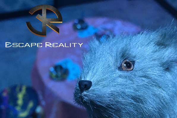Down the Rabbit Hole (Escape Reality) Escape Room