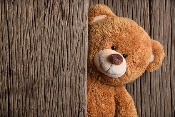 Lost Teddy (Make a Break Escape) Escape Room