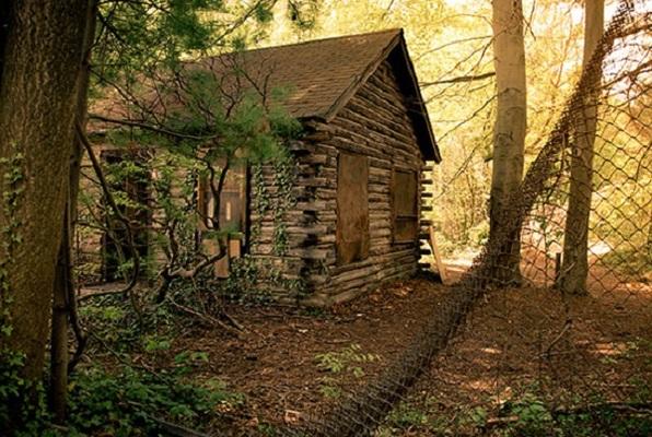 The Cabin in the Woods (Incognito Escape Room) Escape Room