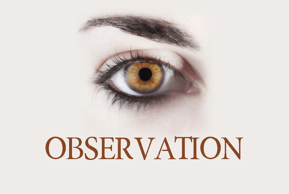 Observation (Escape Rooms HQ) Escape Room