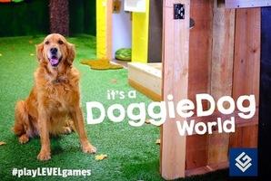 Квест Doggy Dog World
