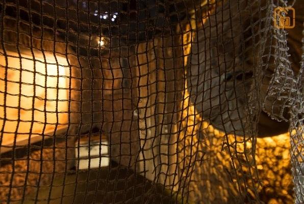 Die Hexe (EscapeGame München) Escape Room