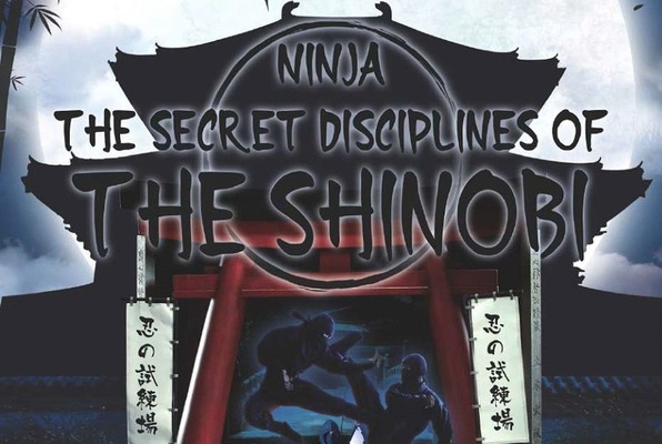 Ninja: The Secret Disciplines Of The Shinobi (Freeing India) Escape Room