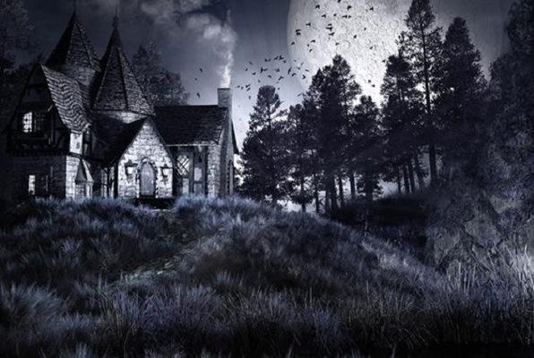 Ehrlich's Manor