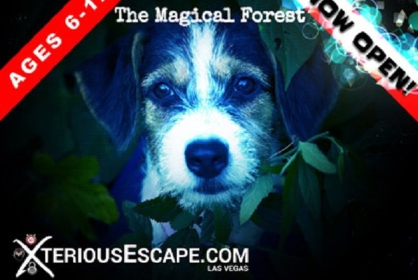 The Magical Forest (Xterious Escape) Escape Room